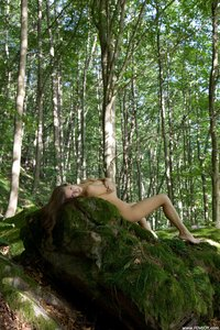 Lizzie  Forest Nymph  Andrej Lupin  54 Imagesa0rtmomonx.jpg