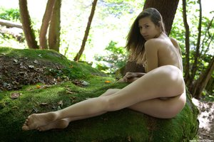 Lizzie  Forest Nymph  Andrej Lupin  54 Imagesq0rtmpd1ob.jpg