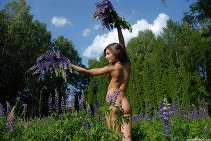 Nikki D  Just In Time  Alan Swann  75 Images-i0rqu9t4ek.jpg