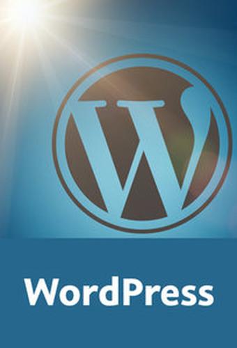 WordPress – Das große Training Komplettes Wissen für erfolgreiche Weblogs, aktuell bis WordPress 4.1